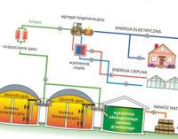 Biogazownia: w oczekiwaniu na termin aukcji energetycznej