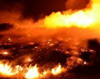 Dramatyczna akcja strażaków