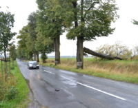 Aleja Lipowa – jesienią poznamy wykonawcę modernizacji drogi?