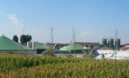 Lubrza: biogazownia czeka na aukcję