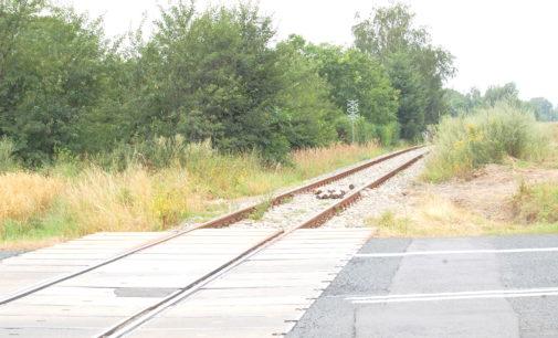 Pociągi wracają na linię Prudnik – Krapkowice
