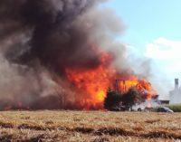 Znamy przyczynę pożaru tartaku?